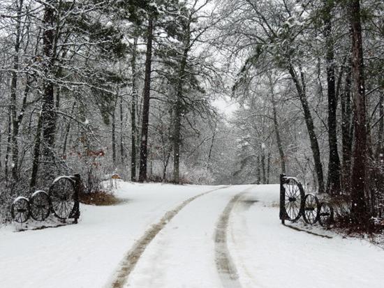 snowy-spring-1