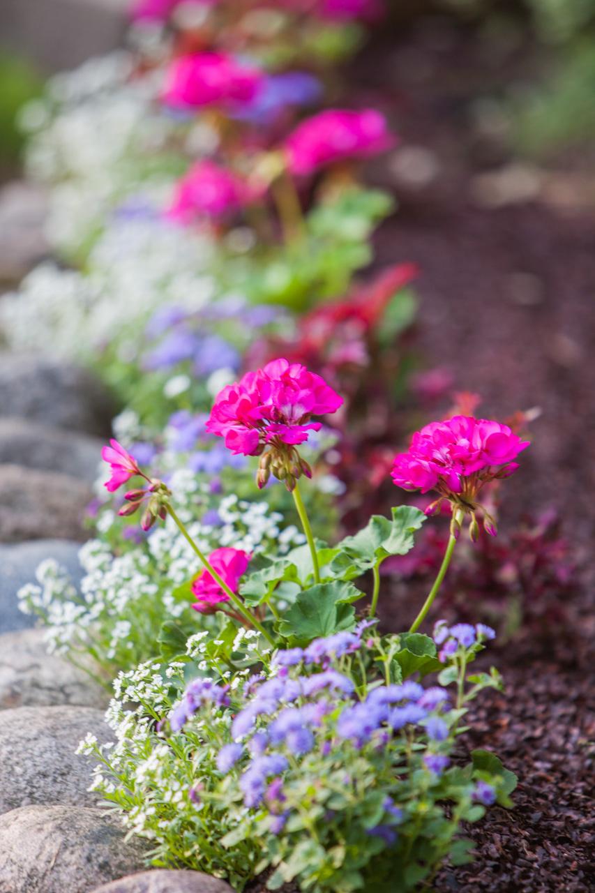Gardeners-#3