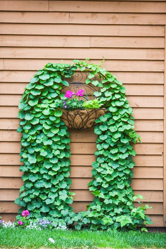 Gardeners-#5
