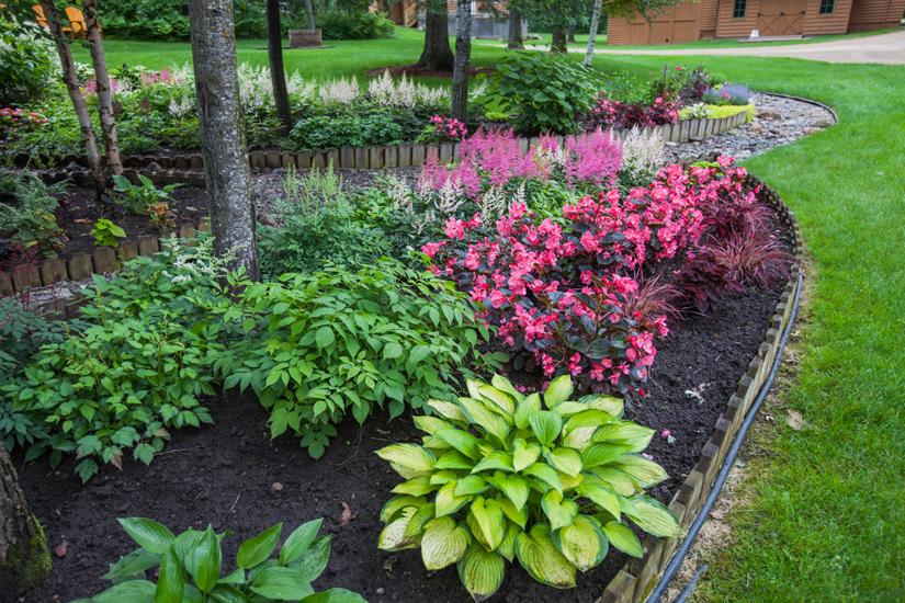 Gardeners-#6