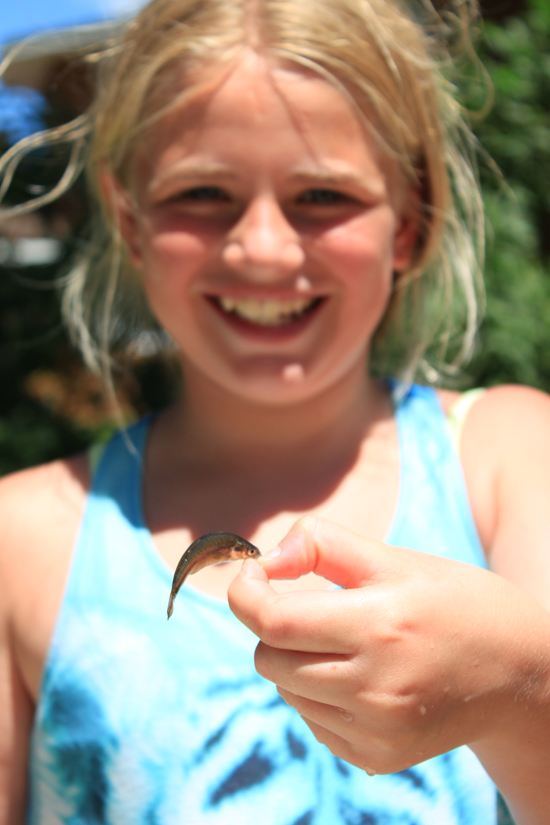 Guest at Half Moon Trail Resort in Park Rapids, MN, holding up a minnow during the resort minnow race activity