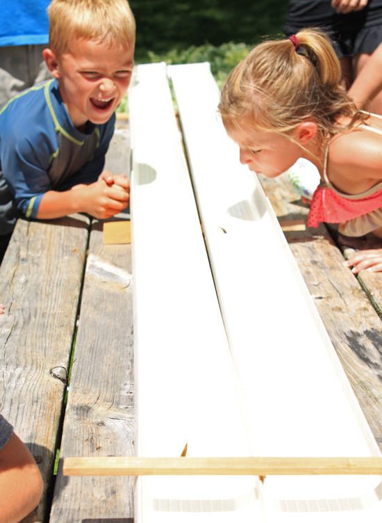 Two kids at Half Moon Trail Resort in Park Rapids, MN  racing their minnows during Tuesdays minnow race activity